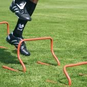 Барьер тренировочный футбольный 30 см